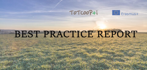 Best Practice Report